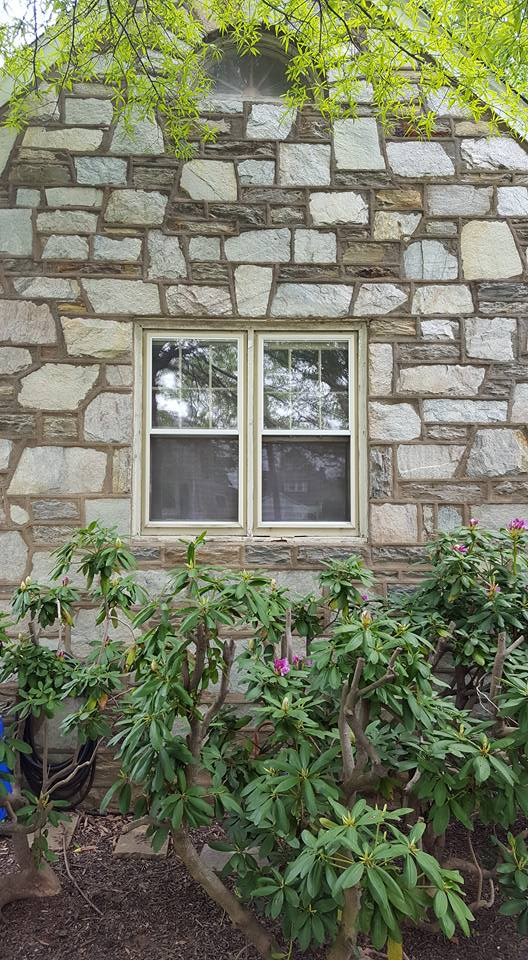 Old Windows In Stone House in Willow Grove